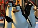 Пингвины Мадагаскара - Рождество (с матом)