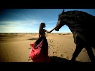 Desiertos: Estrellas del Bicentenario