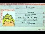 •Писикак в паспорте