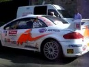 CUOQ PEUGEOT 307 WRC RALLYE LIMOUSIN 2007 BY NIKOS