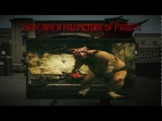 Bully: Myth #4 - Piggsy