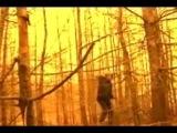 Portishead - It´s a fire
