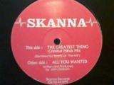 Skanna - The Greatest Thing (Criminal Minds Mix) (Style Jungle, Intelligent, Massive)