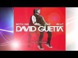 David Guetta Ft. Jennifer Hudson - Night Of Your Life (PREVIEW HQ)