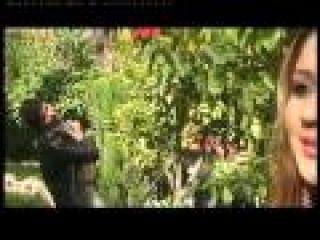 afghani pashto new song dagha eland di zama