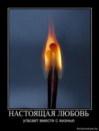 Никита Маленков, 15 августа 1995, Москва, id126706055