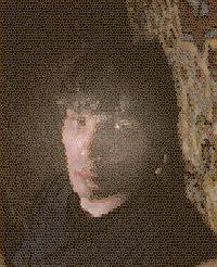 Сергей Август, 26 февраля 1987, Екатеринбург, id38431593