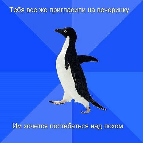 http://cs467.vkontakte.ru/u1593360/116418751/x_8e1fff4a.jpg