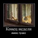 Фото Ирины Бобрик №2