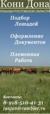 ●=●=●= Кони Дона. Продажа лошадей =●=●=●