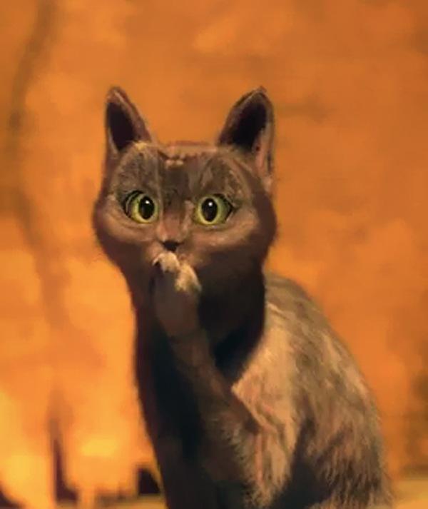 Отрывки из кота в сапогах