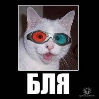 Артём $$$$, 2 сентября , Минск, id78326020