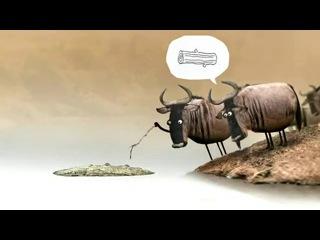 _короткометражный_мультфильм_про_сущность_человеческой_природы(MusVid.net)