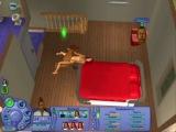 КотЭ как бЭ, играет в Sims 2 =) ня!