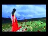 Shahzoda Kechalar Восточные песни