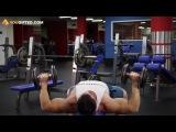 Бодибилдинг. Упражнения для груди. Жим гантелей лежа. Фитоняшки* бикини, фитнес, fitnes, бодифитнес, фитнесс, silatela, и, бодибилдинг, пауэрлифтинг, качалка, тренировки, трени, тренинг, упражнения, по, фитнесу, бодибилдингу, накачать, качать, прокачать, сушка, массу, набрать, на, скинуть, как, подсушить, тело, сила, тела, силатела, sila, tela, упражнение, для, ягодиц, рук, ног, пресса, трицепса, бицепса, крыльев, трапеций, предплечий, жим тяга присед удар ЗОЖ СПОРТ МОТИВАЦИЯ http://vk.com/zoj.sport.motivac