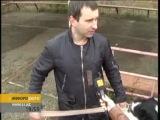 Собачьи бои в Актобе