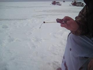 рыбылка в феврале