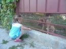 Вероничка и очень злая собака :)