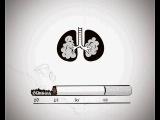 Социальный ролик- вред курения. Жизнь-сигарета