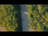 Chapeau Claque - Last Dance (Enliven Deep Acoustic's &amp Kenny Leaven Remix)