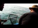 Рыбалка по взрослому