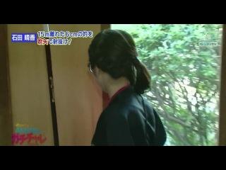 AKB48 no Gachinko Challenge #19 от 2 ноября 2012