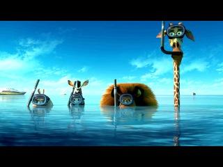 Мадагаскар 3 фильм