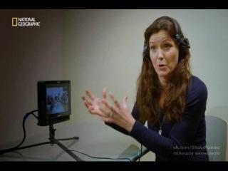 Обезьяночеловек / apeman: карьеристы (3 серия / 1 сезон / 2013) national geographic