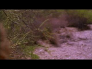 Повелитель времени (1995) СШАКлуб.Фильмы про мальчишек-2 vk.com/club17492669