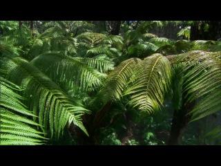 BBC: Тайны Тихого океана: Океан островов (1 Серия)