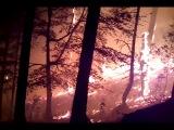 Пожар в Гурзуфе.