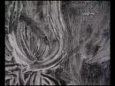 BBC Частная жизнь шедевров. Винсент Ван Гог 1853-1890 Подсолнухи 1888