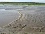 прилив реки мезени