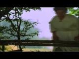 003. Francis Goya- нарезка из фильма Elvira Madigan