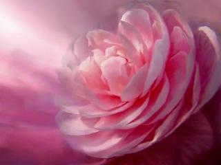 С днём рождения - Не грусти в день рожденья (Dalida- Nostalgie)