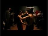 Separation Serenade ~ Club Des Belugas Feat. Brenda Boykin