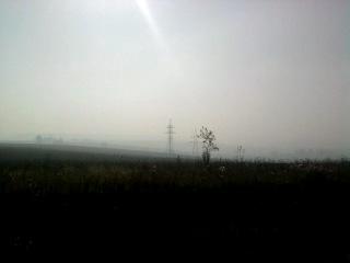 Горит лес, всё в дыму(