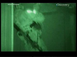 Surviving The Cut(На пределе)-Navy EOD(Саперная служба Морской пехоты)