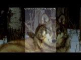 Основной альбом под музыку Kurbat feat GoodZone&ampТ9 - Как только поймем все знаки. Picrolla
