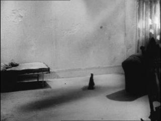 Фильм - С.Беккет, А.Шнайдер, Б.Китон [1965]