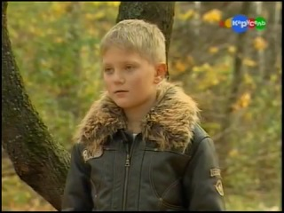 Чешский волчак, или чехословацкая волчья собака