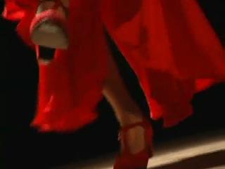 Flamenco dance by Celina Zambon