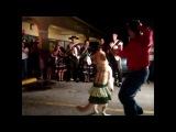 Лабрадор танцует цыганочку