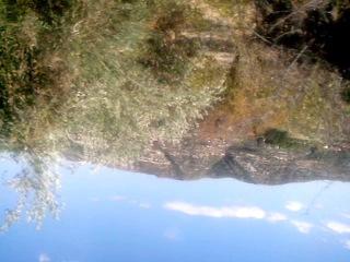кипр мой отдых на экскурсии природа кипра в горах пейзажи кипра