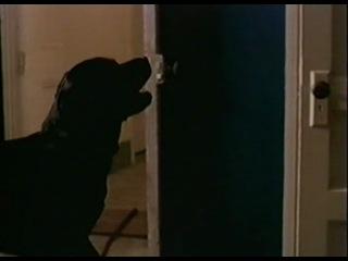 Визитер Пришелец The Visitor (1997) 1.sezon.01.serija