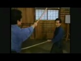 Movements of Tenshin Shoden Katori shinto ryu 1_ 3