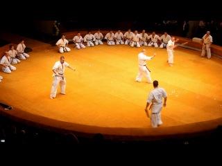 Фестиваль боевых искусств.цирк Воронеж.моё выступление.смотреть в высоком разрешении!