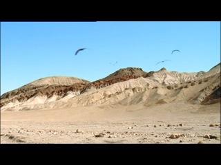 Прогулки с монстрами будущего. 4  Земля через 5 миллионов лет. Серия 4