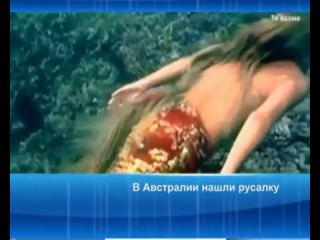 В Австралии нашли русалку | ВКонтакте